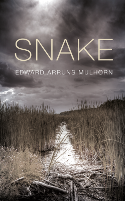 Image of the novel Snake
